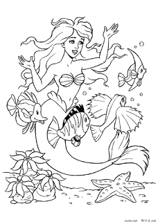 Crayola Disney Princess Giant Coloring Pages  amazoncom